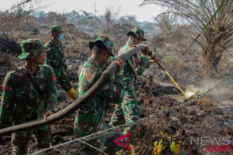 Belasan hektare lahan gambut di pesisir Riau terbakar