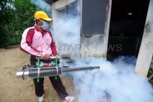 Wabah Chikungunya Serang Puluhan Warga Tulungagung