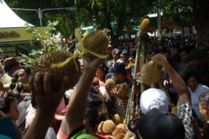 Berebut Durian Merah