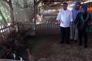 Mendes Minta Pemerintah Desa Segera Bentuk BUMDes