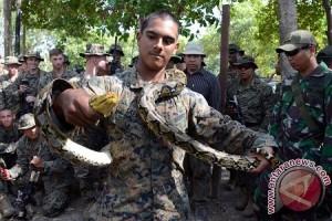 Marinir Amerika Tangkap Ular