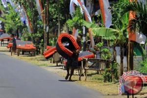 Mepe Kasur Suku Osing