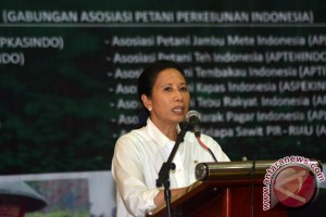 Menteri BUMN: Pabrik Semen di Rembang Beroperasi April
