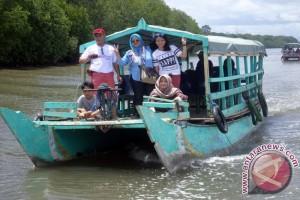 Petualangan Seru di Mangrove Bedul Banyuwangi