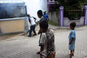 41 Warga Bondowoso Terserang Penyakit Chikungunya