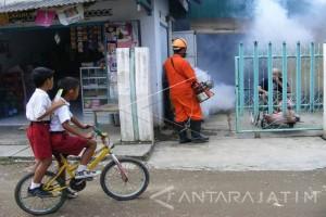 Kasus Penyakit Demam Berdarah di Ngawi Menurun Signifikan