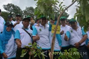 Trenggalek Dapat Bantuan 1,89 Juta Bibit Hijaukan Hutan Gundul