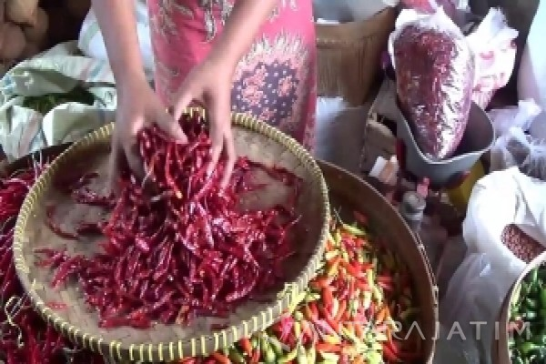 Pemilik Warung Magetan Beralih ke Cabai Kering