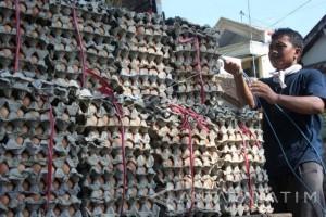 Harga Telur Ayam di Madiun Capai Rp21.000/Kg