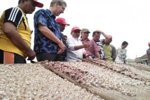 Wagub Serahkan Bantuan Lantai Jemur Ikan Nelayan Bulak-Kenjeran (Video)