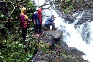 Serunya Berpetualang di Air Terjun Sarang Tawon Jember (Video)