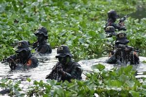 Patroli Rawa Intai Amfibi Marinir