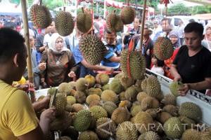 Festival Durian Khas Kabupaten Pasuruan