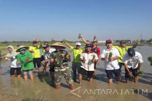 Stok Beras di Bangkalan Aman Jelang Ramadhan