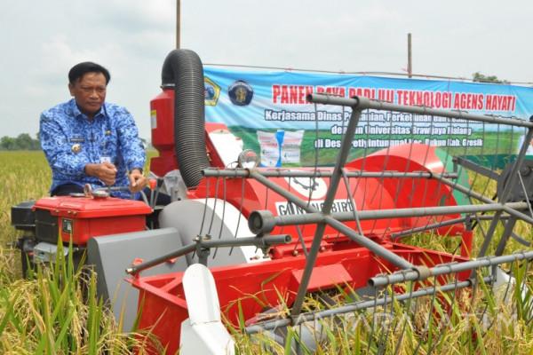 Bupati Sambari Sejahterakan Petani di Tengah Industrialisasi