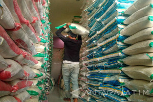 Produk Pertanian Gresik Dijual ke Jabodetabek