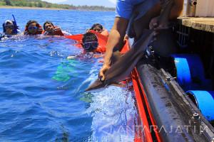 Omset Bangsring Banyuwangi Kelola laut Rp800 Juta/Bulan