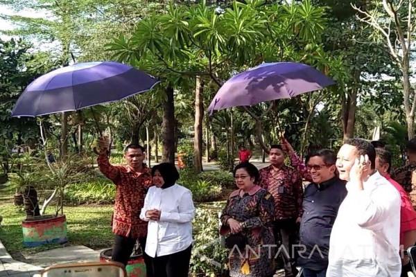 Risma Ajak Megawati Jalan-jalan di Taman Bibit (Video)