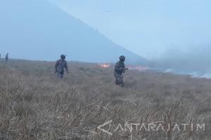 Kebakaran Hutan Gunung Bromo Berhasil Dipadamkan
