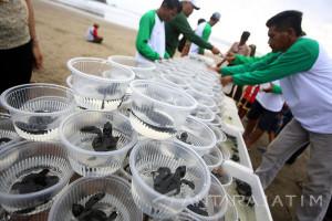 Perbaikan Infrastruktur Menuju Pantai Selatan Blitar Terus Diperbaiki