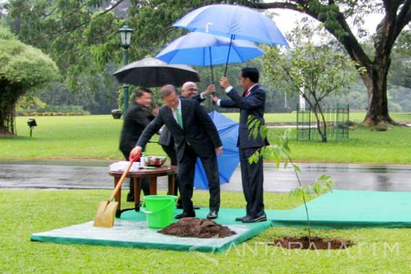 Presiden RI Terima Kunjungan Presiden Korsel (Video)