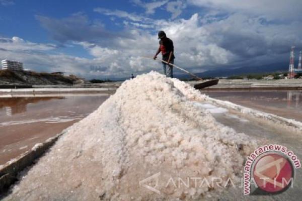 PT Garam Bidik Produksi Garam Olahan Tahun 2018