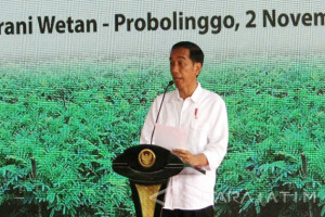 Jokowi Hopes Social Forestry Can Encourage Productive Community
