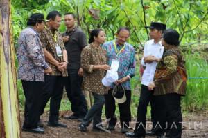 Menteri LHK : Evaluasi Perhutanan Sosial Per Dua Bulan