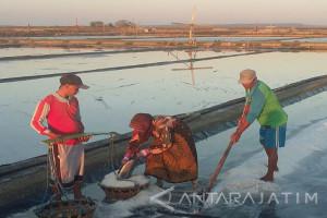 Petani Garam Sumenep Tolak Impor Garam Industri