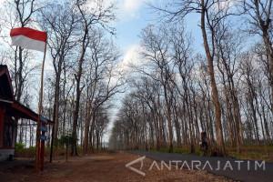 Ruas Jalan Hutan Bojonegoro Bukan Prioritas Perbaikan