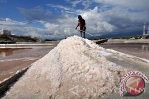 Aliansi Pemuda Pamekasan Protes Impor Garam