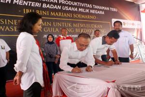 PTPN XI Kerja Sama Mitra Tani Dua Tujuh Untuk Kembangkan Bisnis Edamame