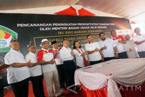 Sinergi BUMN dengan Petani Tebu di Jember Akan Diterapkan Secara Nasional