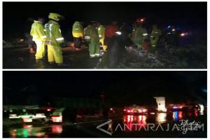 Akibat Pohon Tumbang, Jalur Pantura Situbondo Macet Hingga Dua Jam