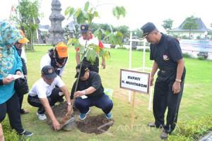 Guru Madiun Tanam Pohon Peringati HUT PGRI