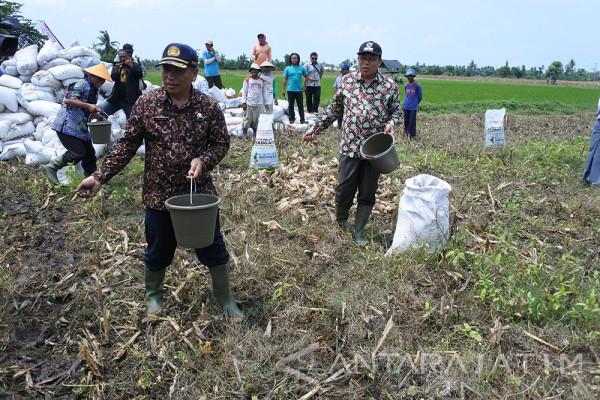 Pemkab dan DPRD Situbondo Persiapkan Perda Lahan Pertanian