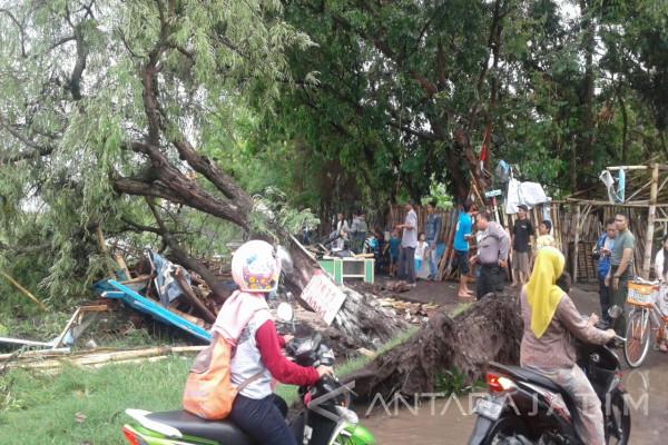 Angin Puting Beliung Terjang Puluhan Rumah di Probolinggo