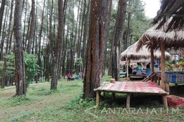 Catatan Akhir Tahun - Kerja Keras Kabupaten Madiun Kembangkan Potensi Pariwisata