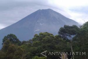 Status Waspada, Gunung Semeru Alami Gempa Letusan dan Guguran