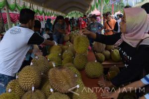 Durian Lereng Lawu di Ngawi