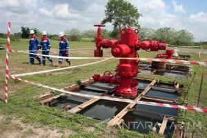 Proyek Gas Bojonegoro  Butuh 3.800 Tenaga Kerja