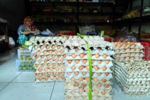 Harga Telur di Bojonegoro Rp24.000/Kilogram