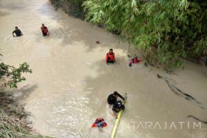UPT: Bengawan Solo di Hilir Bojonegoro Surut