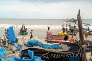 Ikan Laut Langka di Pasar Bojonegoro (Video)
