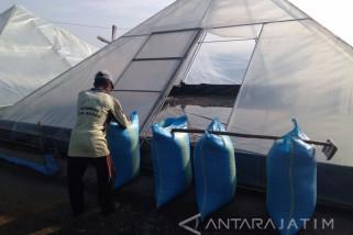 Begini Cara Produksi Garam di Probolinggo Selama Musim Hujan