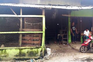 Sidoarjo Minta Pedagang Cari Alternatif Penjualan Ayam