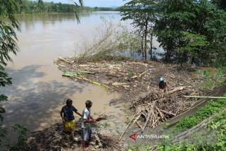 Bengawan Solo di Hilir Bojonegoro di Bawah Siaga Banjir