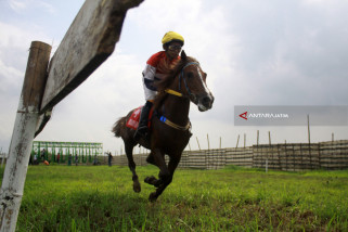 Pacuan Kuda Piala Menpora