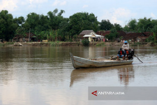 Belasan Rumah di Dekat Bengawan Solo Bojonegoro Rawan Longsor (Video)