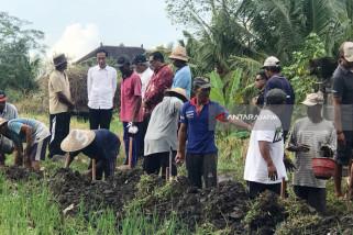 Jokowi: Proyek Padat Karya Dongkrak Daya Beli Rakyat Pedesaan (Video)